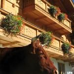 Bauernhaus mit Balkon
